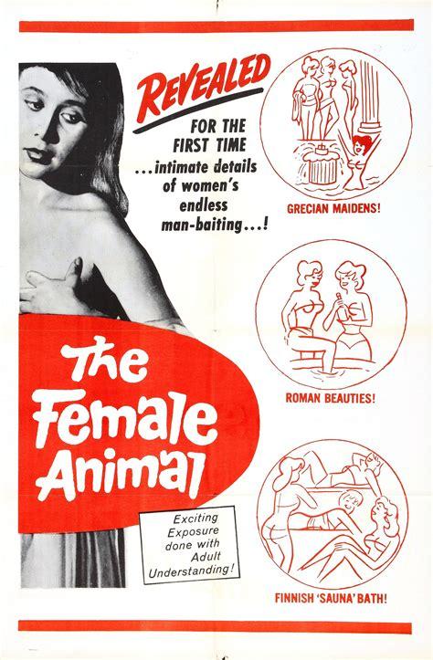 sex education records 1950 jpg 1930x2946